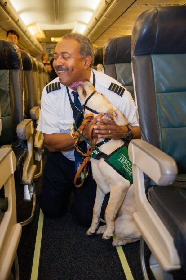 Service dog and pilot