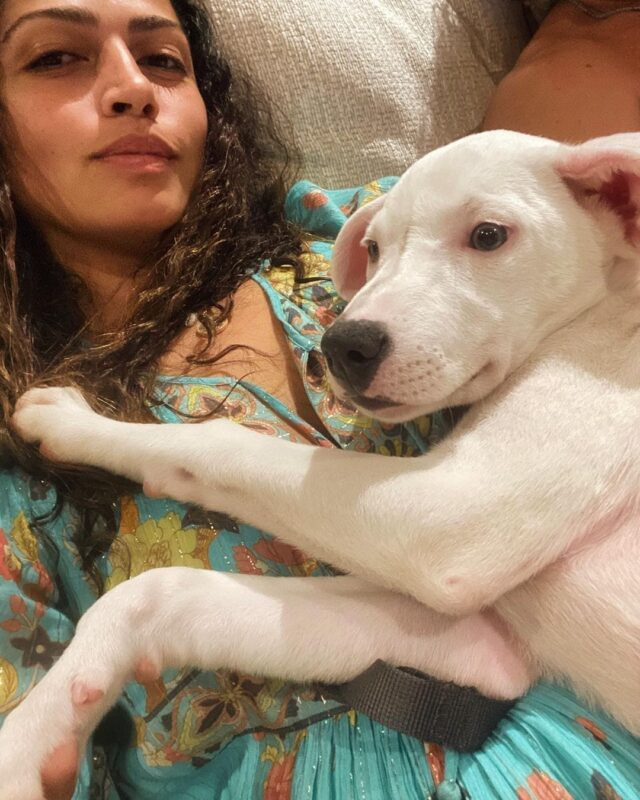 Camila Alves McConaughey Rescue Puppy