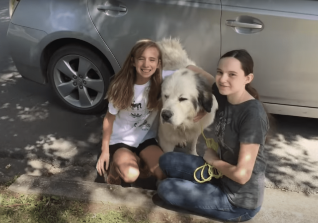 Girls with Great Pyrenees