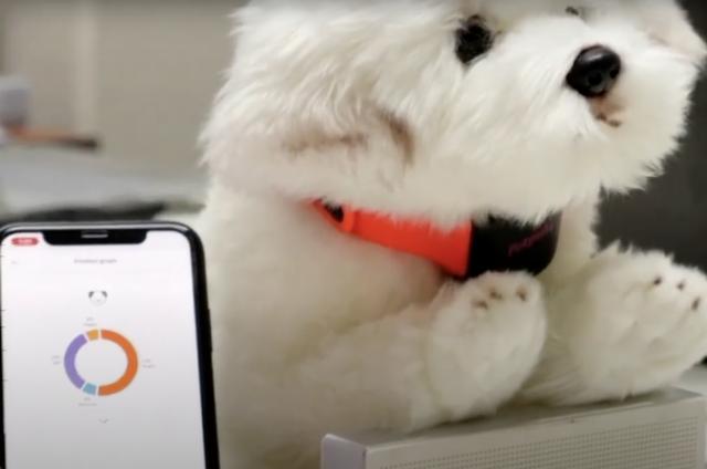 Petpuls Dog Collar