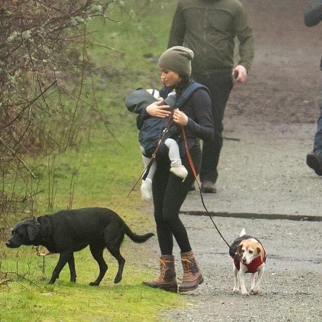 Meghan Markle walking dogs