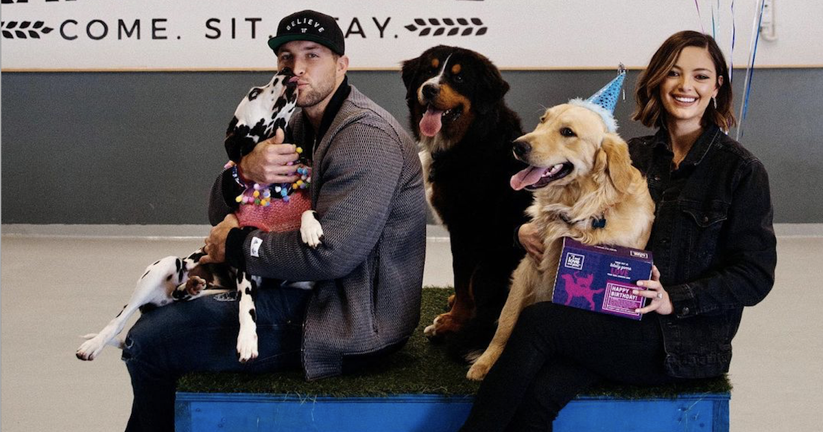 Tim Tebow Rescue Dog Campaign