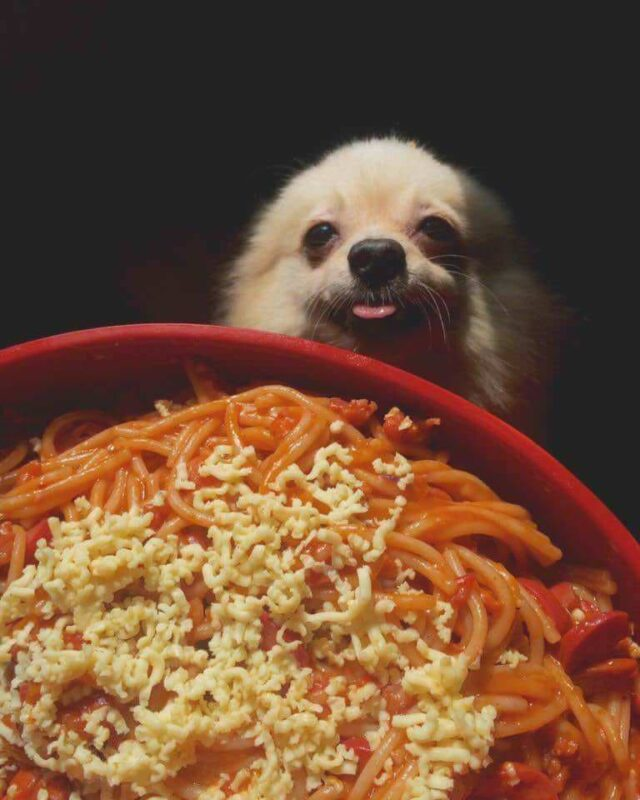 He wants Spagoote