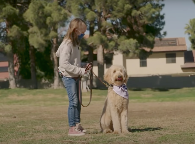 Girl Training Service Dog