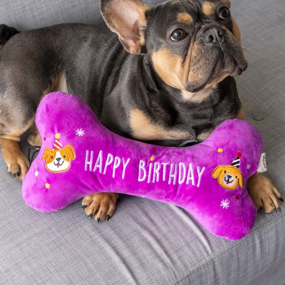 Special Offer! Happy Birthday 🎉 Snuggle Buddy Plush Pillow Toy