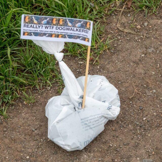 Poop Bag Flag