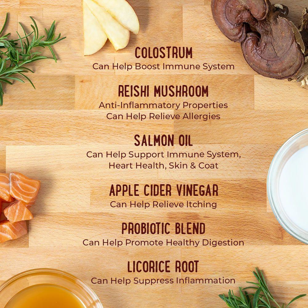 reishi-mushroom-ingredient-supplement