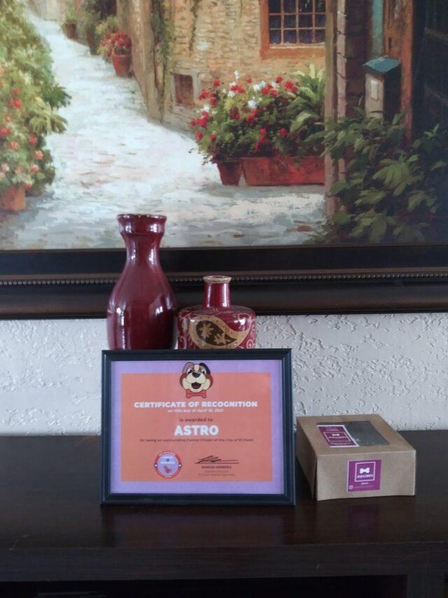 Astro Pit Bull Hero Award