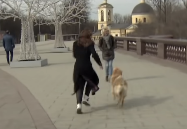 Dog Runs with Microphone