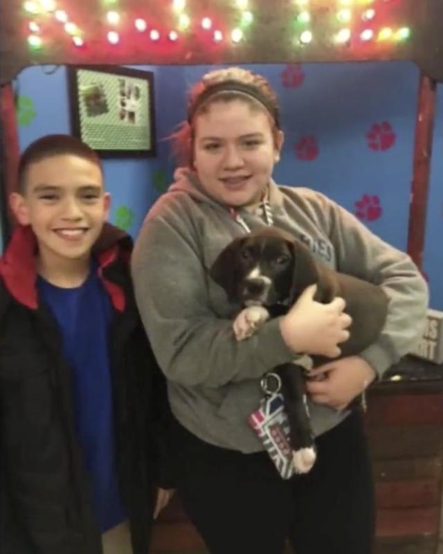 Kids adopting puppy