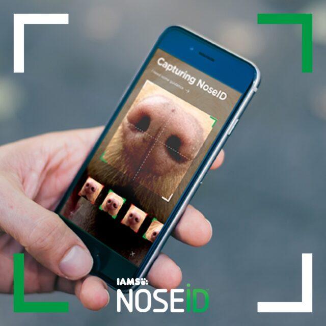 Scanning Dog Nose Print