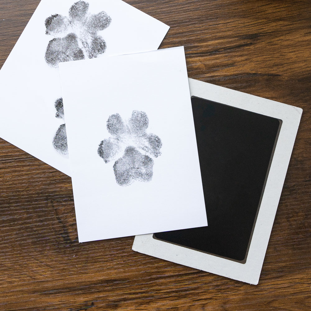 """You Leave Paw Prints on My Heart - """"No Mess"""" Ink-less Paw Print Keepsakes"""