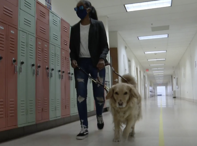 Blind teen and service dog