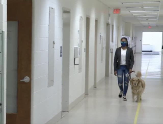 Blind teen and service dog walking down hallway