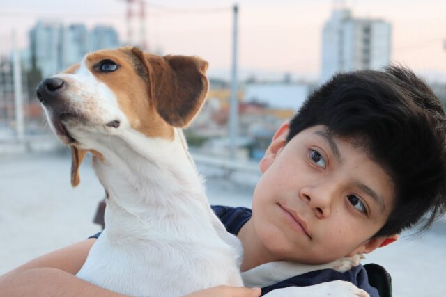 Boy holding dog passive