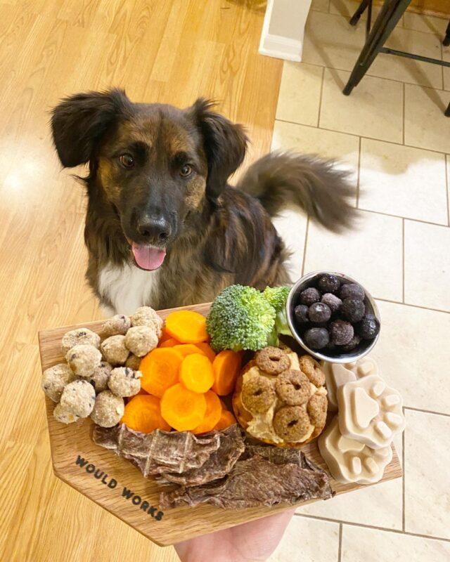 Dog healthy barkuterie board