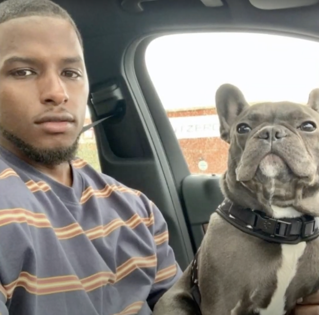 French Bulldog with his human