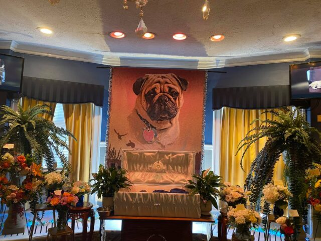 Pug Funeral Service