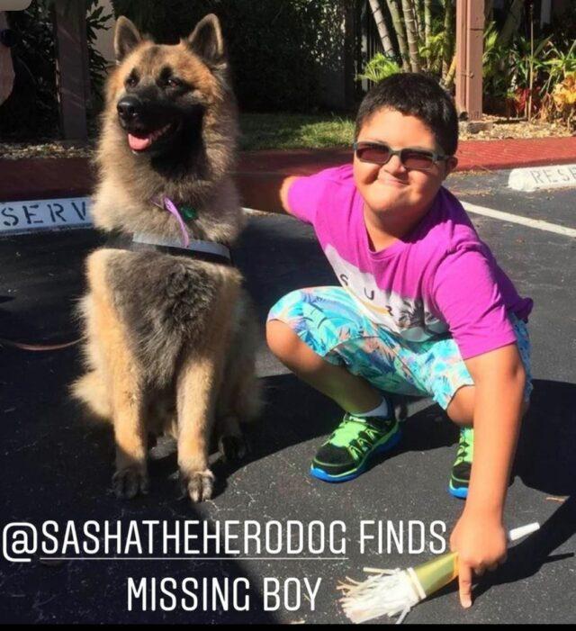 Shelter_dog_rescues_lost_boy