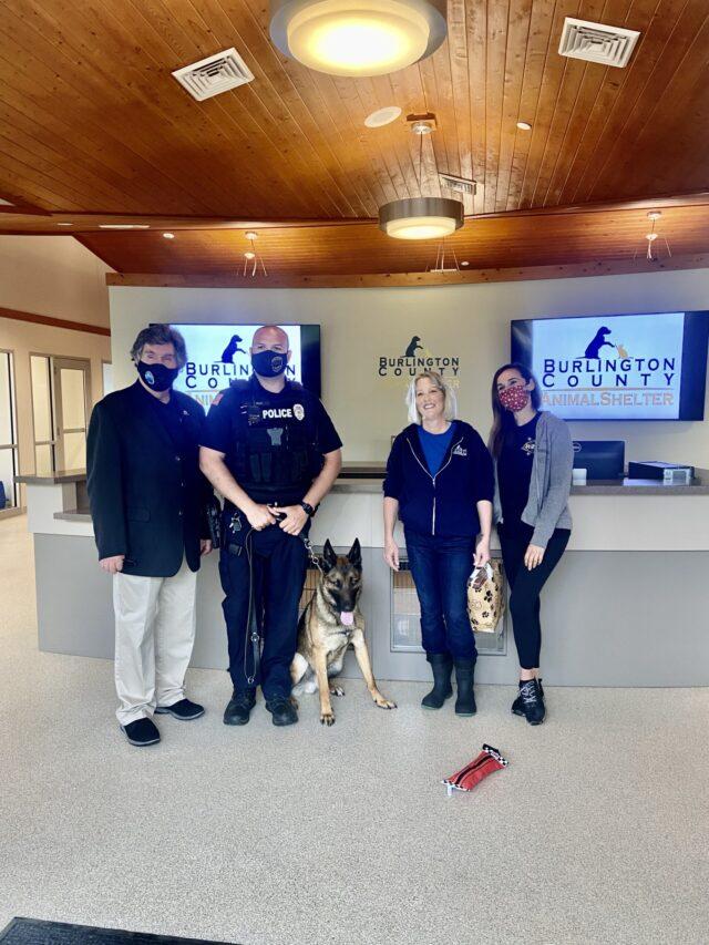 shelter dog to police K9
