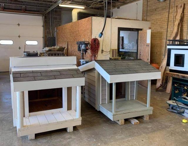 Build dog houses