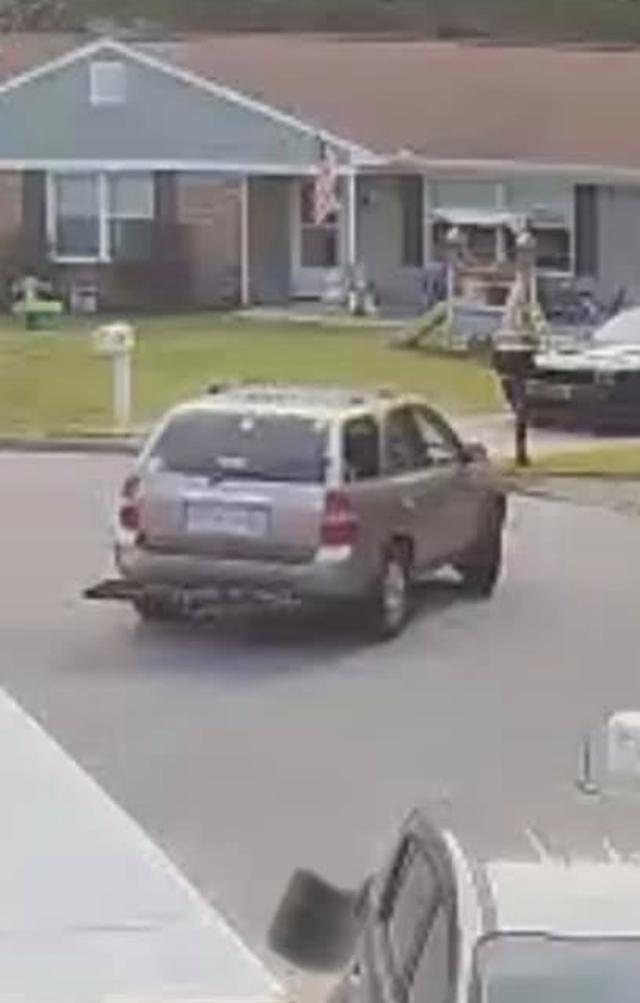 Car stealing Pit Bull