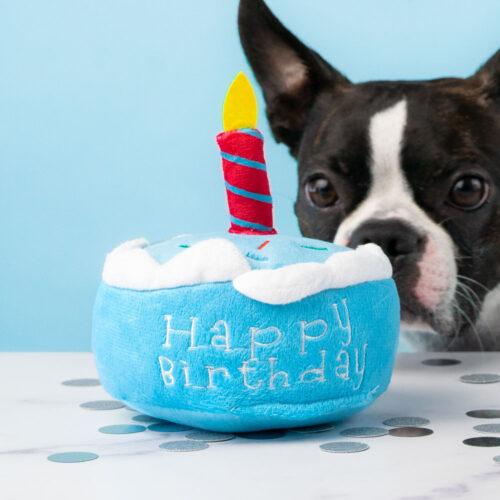 Good Boy Happy Birthday Cake Toy