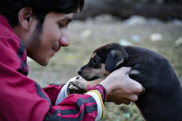 Man petting puppy