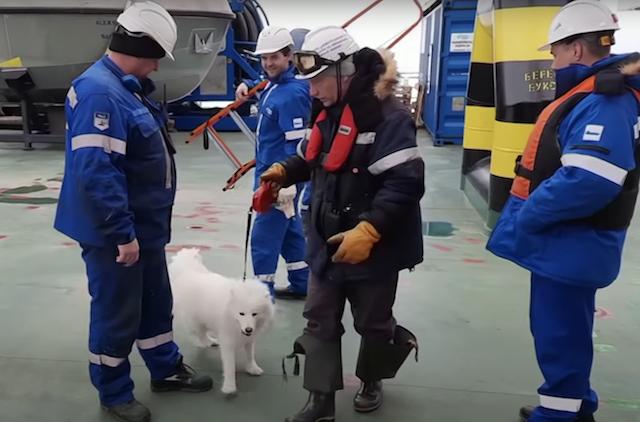 Shipmates rescue dog from ice