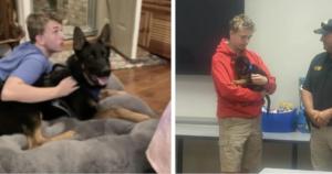 Teen's German Shepherd killed