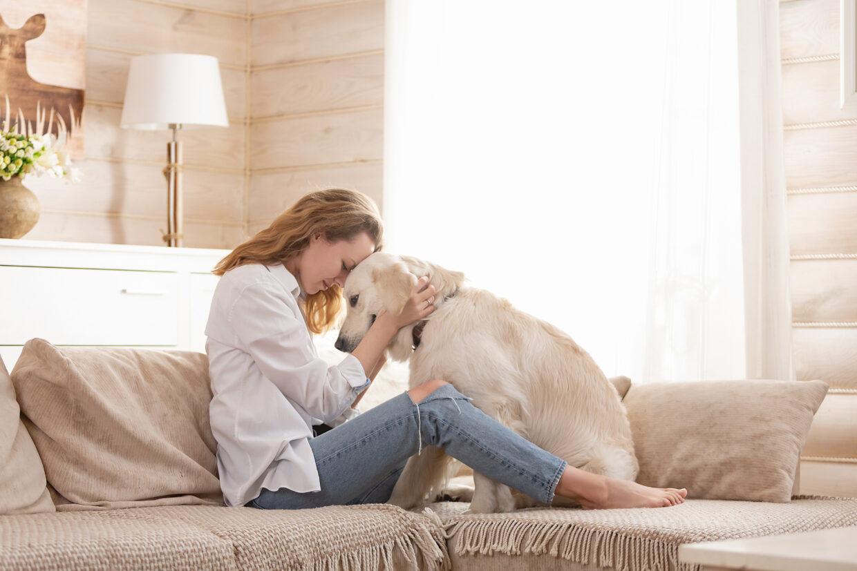 affectionate-dog
