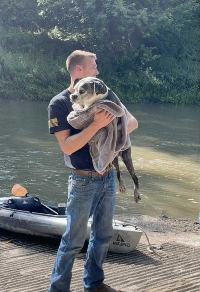 Dog on Kayak Heads Home
