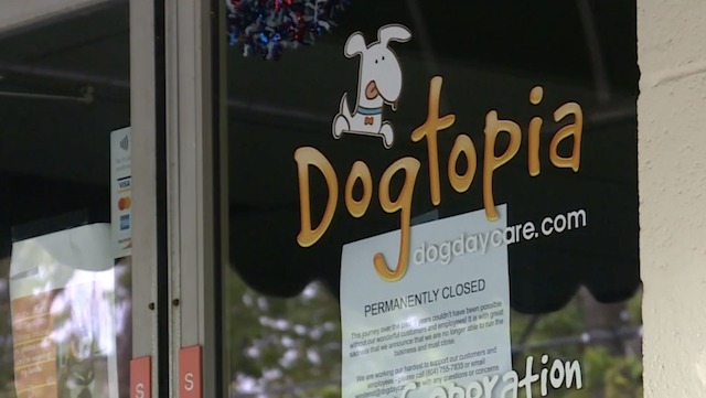 Dogtopia permanently closed