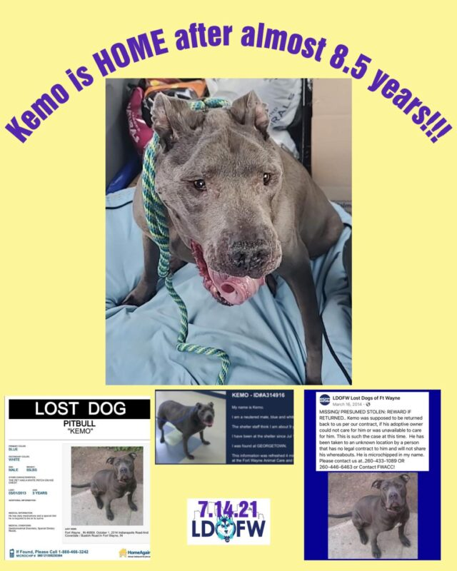 Kemo is found