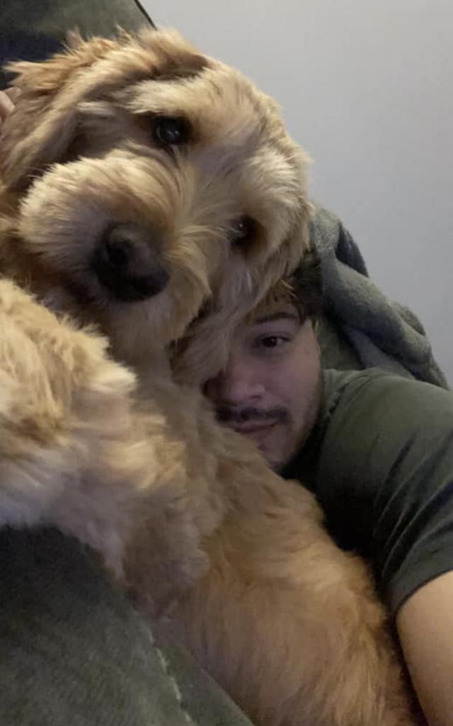 Man Cuddling Goldendoodle