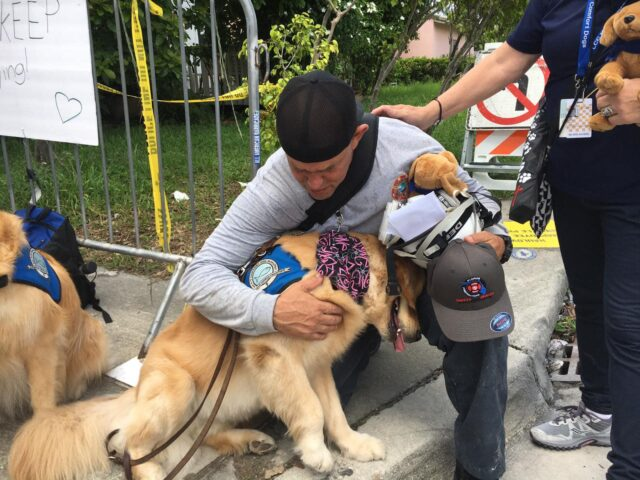 Man cuddling therapy dog