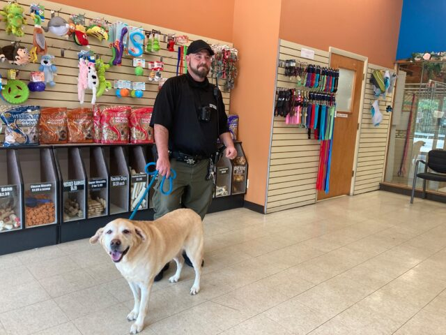 Shelter staff and dog in need