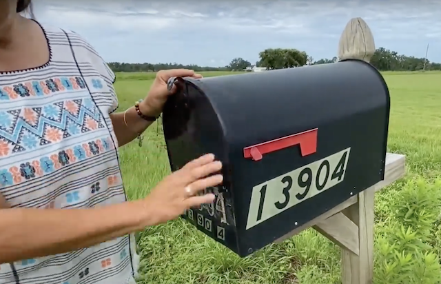 Woman looking in mailbox