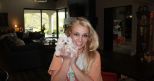 Britney Spears loses dogs