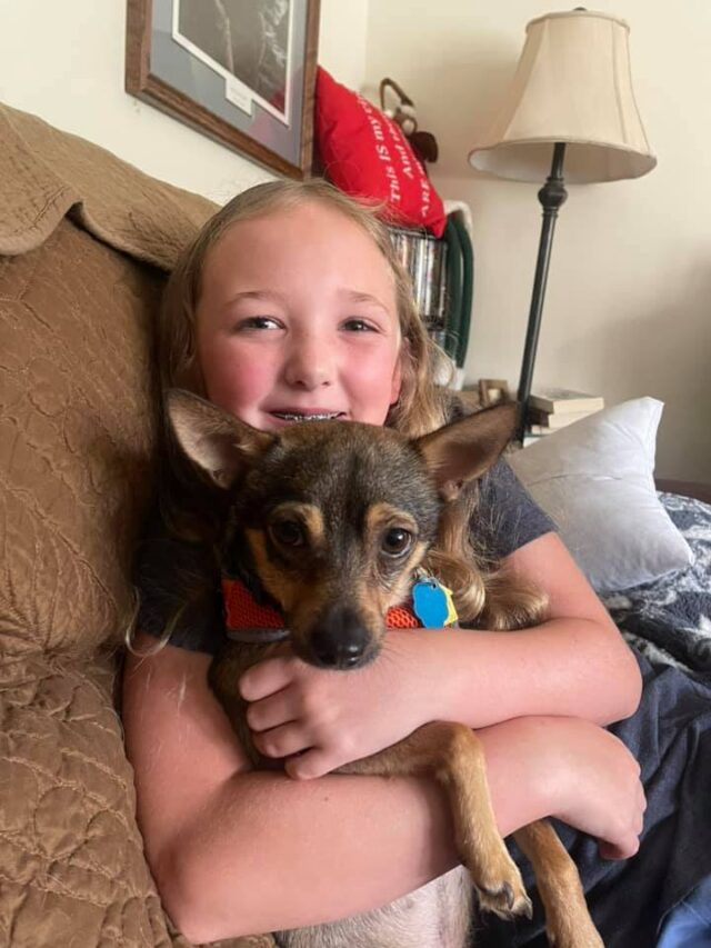 Foster dog with kid