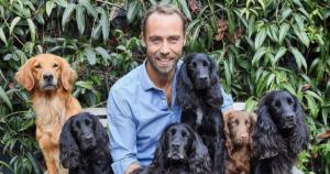 James Middleton Dog Travels Featured