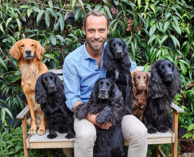 James Middleton's Six Dogs
