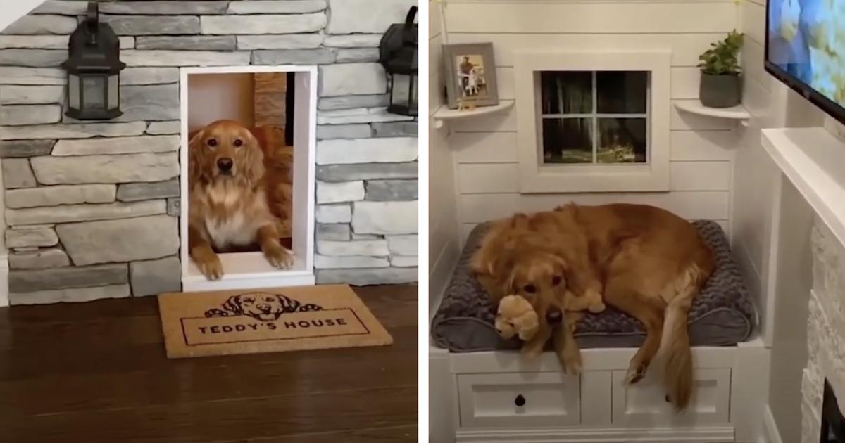 Luxury indoor doghouse