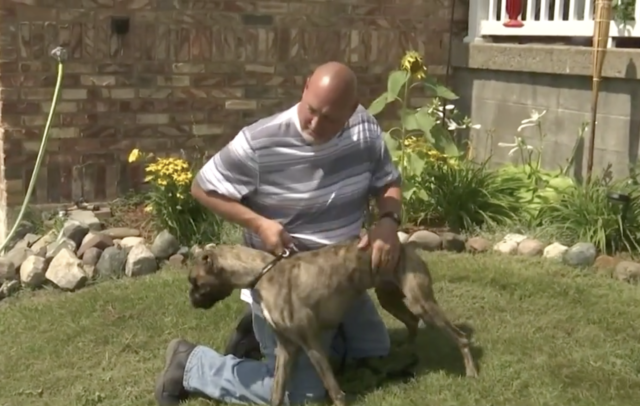 Man with his rescued dog