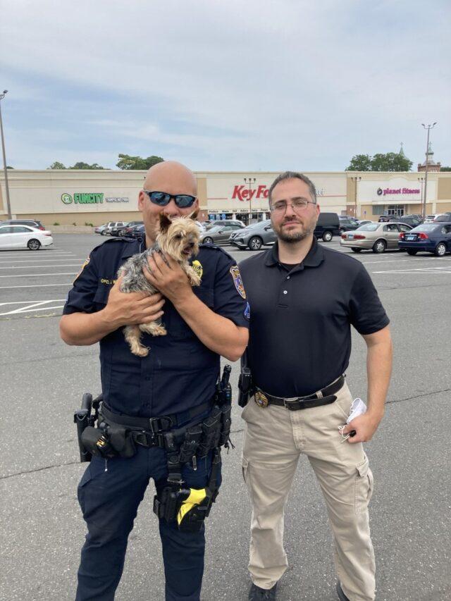 Police rescue stolen Yorkie