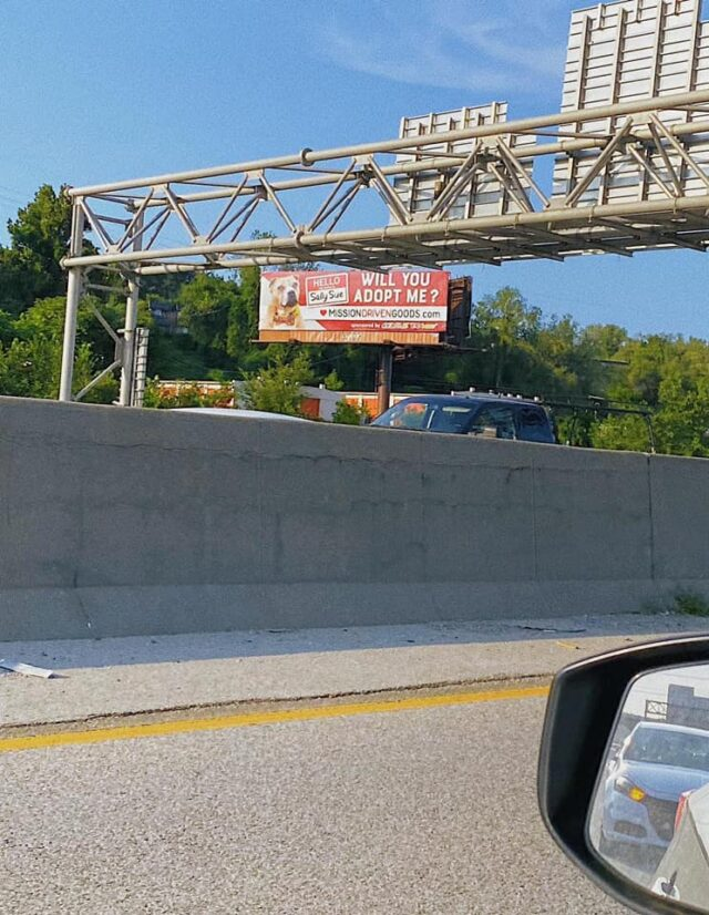 Sally Sue Billboard Kansas