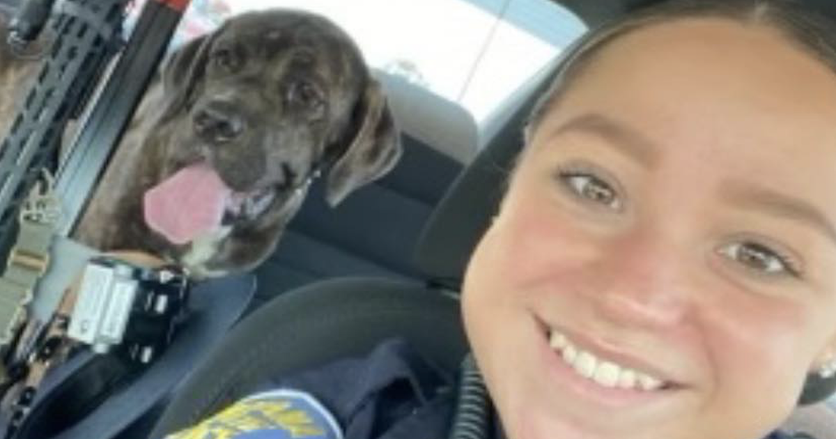 State trooper rescues puppy