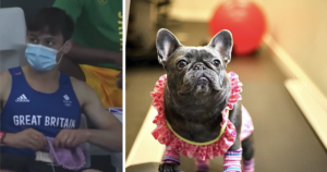 Tom Daley knits dogs jumpsuit