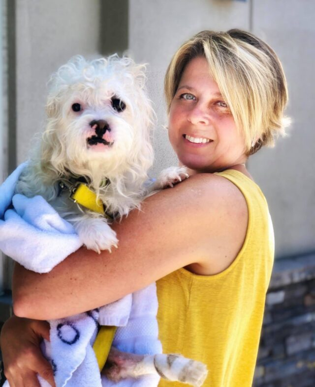 Woman holding paralyzed rescue dog