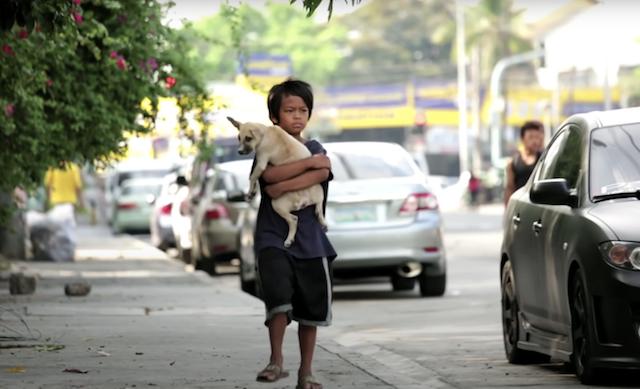 Boy and puppy walking down street